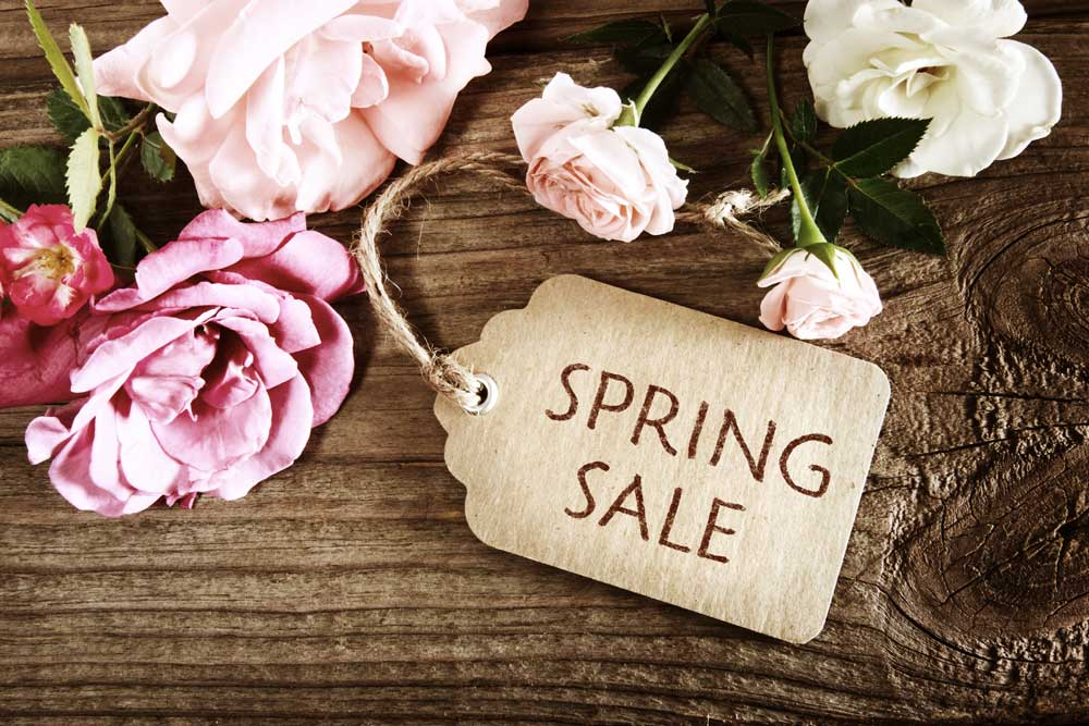 Spring Sale at a Flair